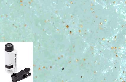 銅の付着の確認