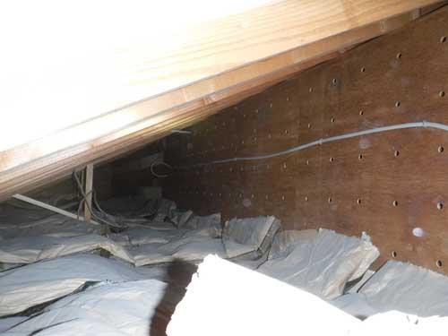 天井裏調査