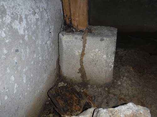 床下からのシロアリの侵入