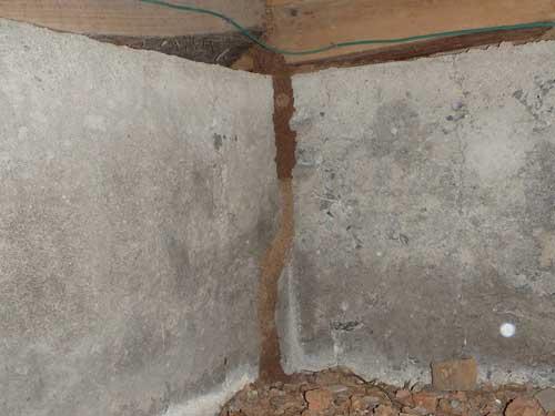 苅田町でのシロアリ調査 床下の蟻道