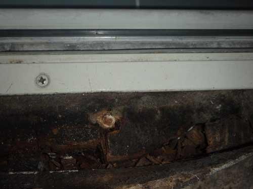 脱衣場のシロアリ被害と木材腐朽
