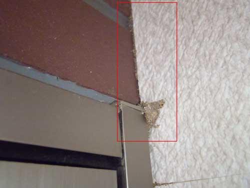 事務所内のドアの上部に「蟻土」が