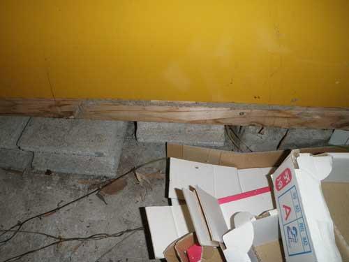 倉庫のシロアリ被害