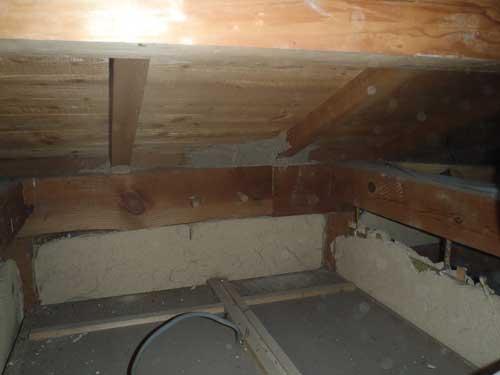 天井裏のシロアリ