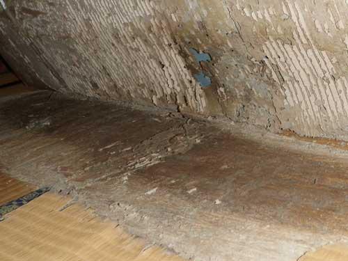 畳のシロアリ被害(2階和室)