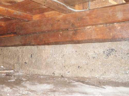 床下のシロアリ駆除施工