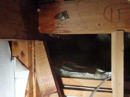 天井裏のシロアリ駆除