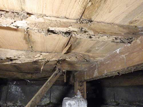床下のシロアリ被害